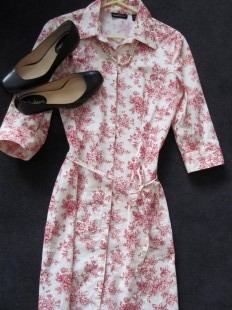 shirtdress 1